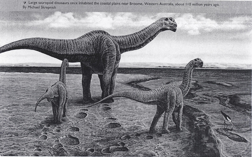 Sauropod Tracks Untitled Docume...